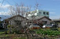 千塚4丁目 貸家2棟